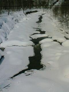 尾白利加川