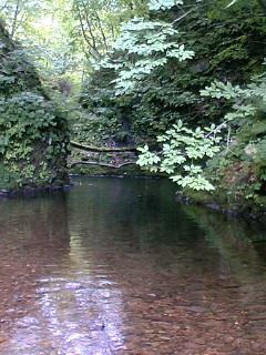 今日2本目の川