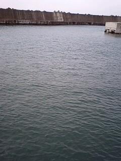 JIJI,s漁港