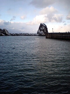 朝一の漁港