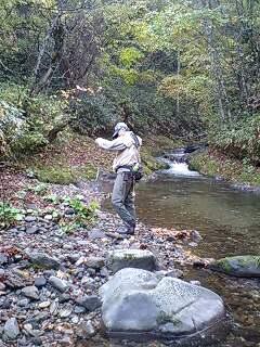 渓と岩魚と滝とキノコ