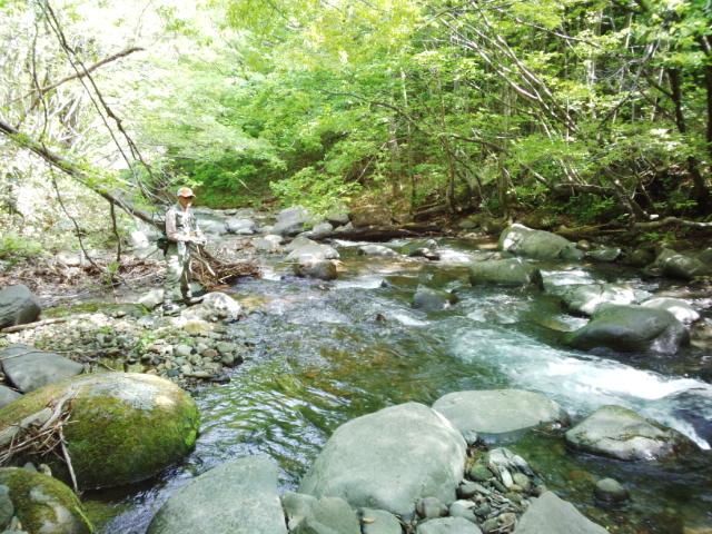 イワナの渓