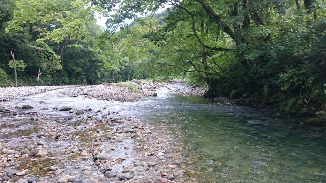 渓流へ涼を求め