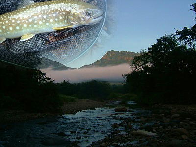 Mountain_stream_fishing